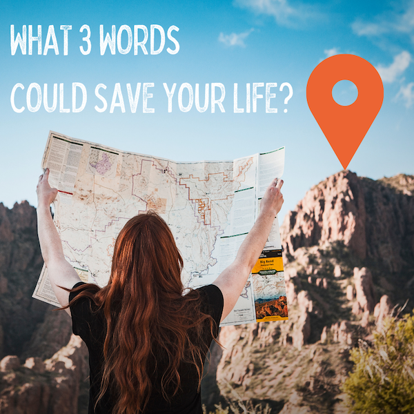 What3Words mapping image